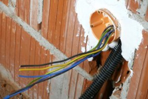 Электрический шнур бытовых приборов
